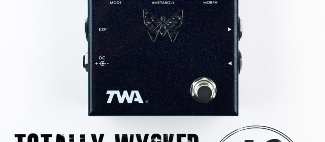 TWA DM-02 Dynamorph™ Fuzz Filter Synth