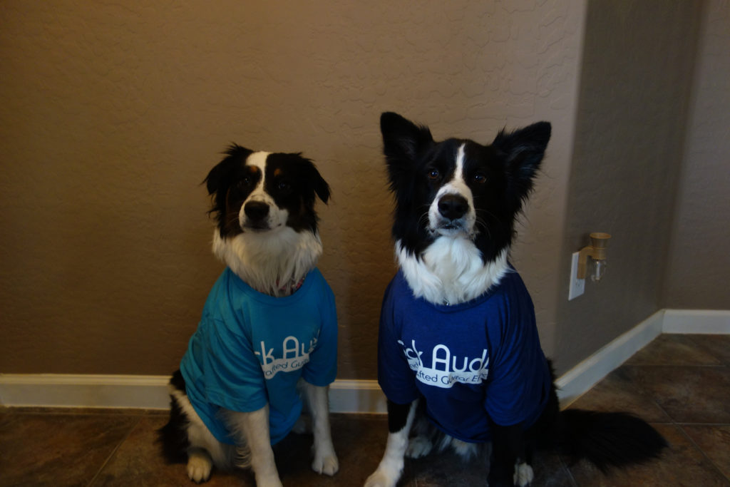 Vick Audio - Dogs In Shirts